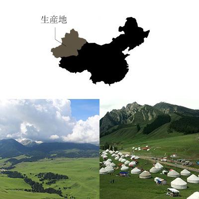 中国ウイグル自治区