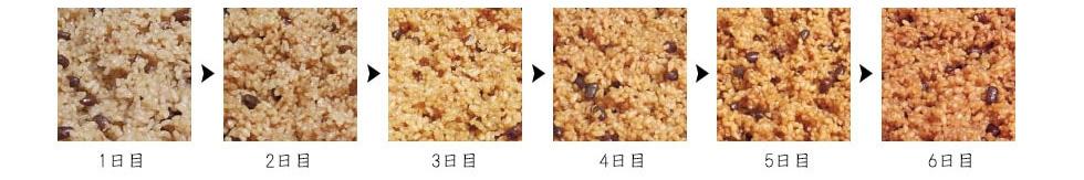 酵素(寝かせ)玄米の変化